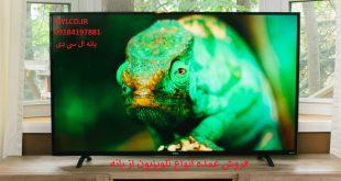 خرید عمده انواع تلویزیون ال ای دی